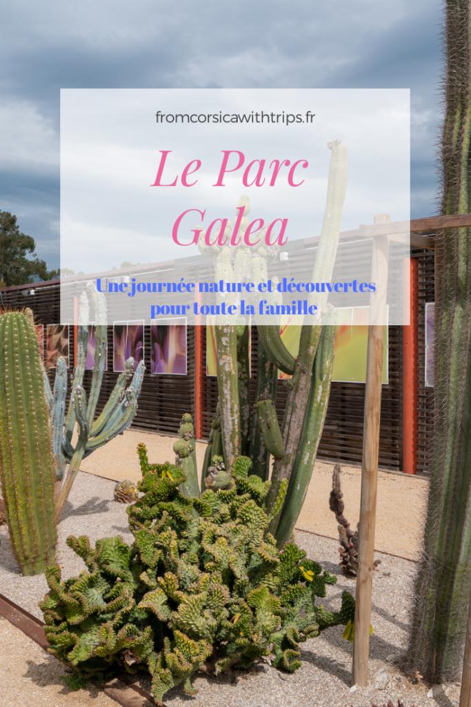 Visiter le Parc Galea en Corse, une bonne idée de sortie pour toute la famille