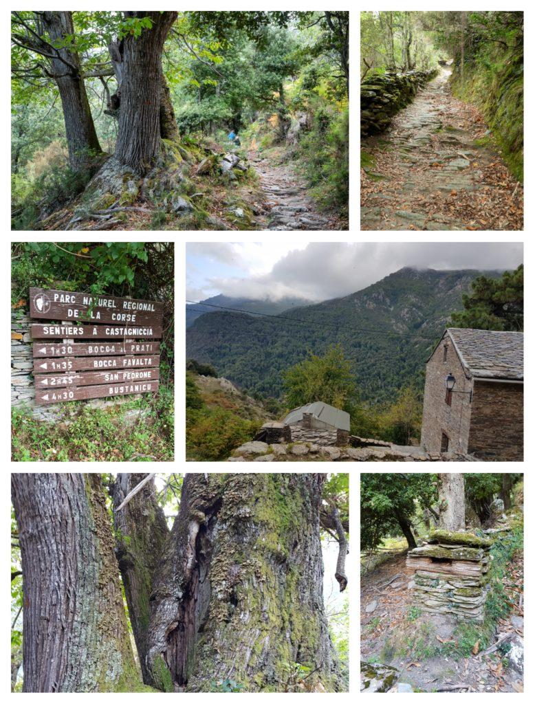 Campodonico, village le plus haut de Castagniccia