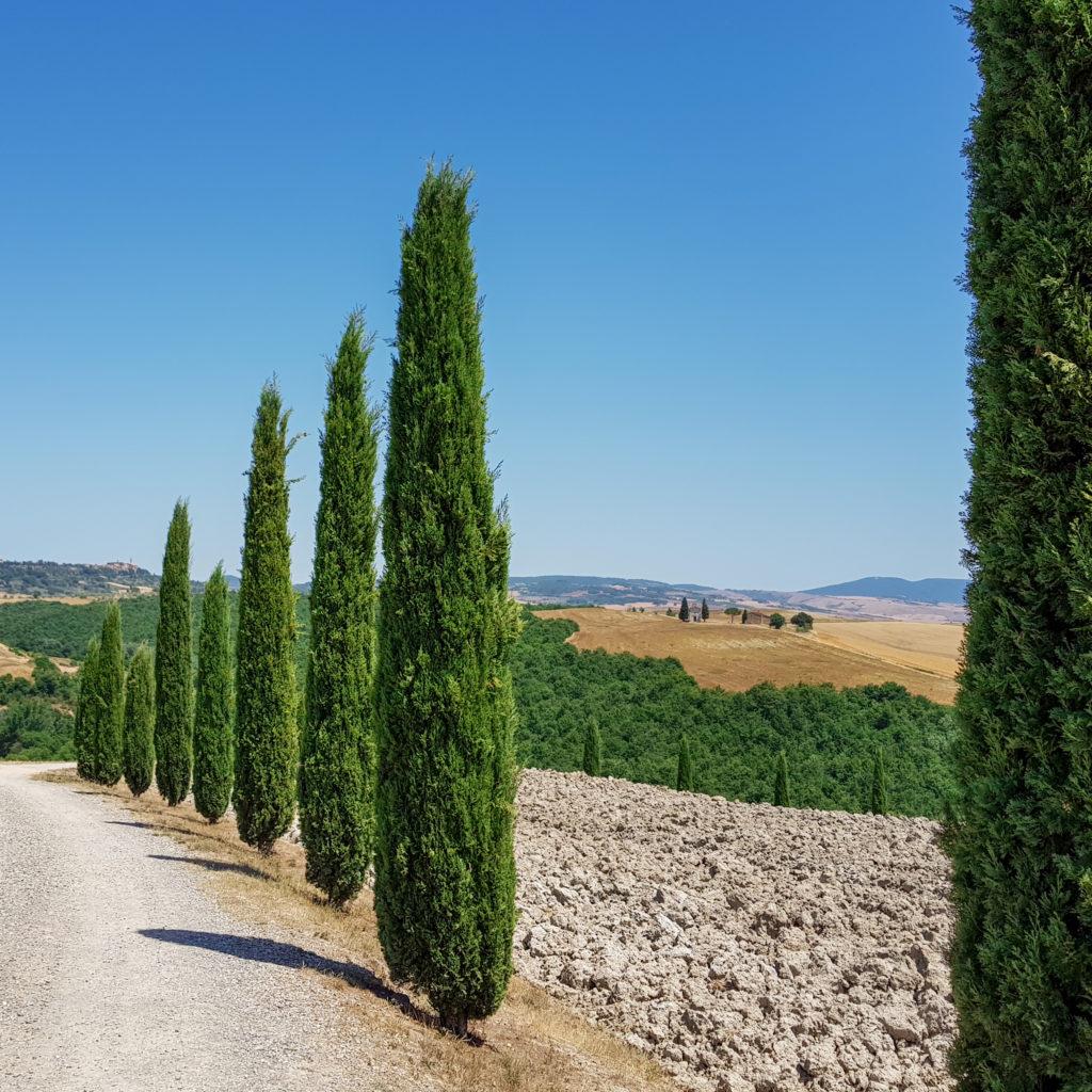Week-end romantique en Toscane : se perdre sur les petites routes du val d'Orcia