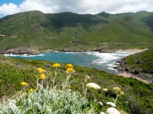 Visiter le Cap Corse