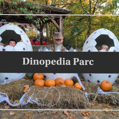 Une journée à Dinopedia Parc
