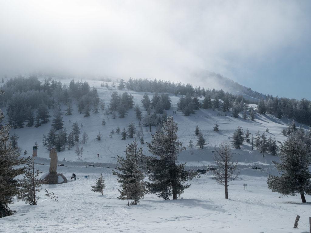 le col de Vergio en hiver. Idée sortie avec les enfants en hiver
