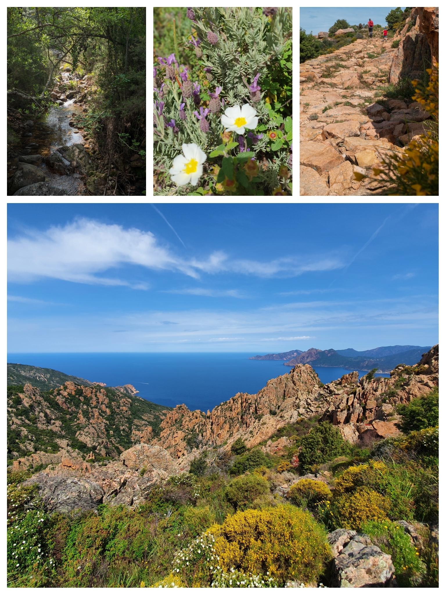 Randonnées dans les calanques de Piana, Corse du Sud